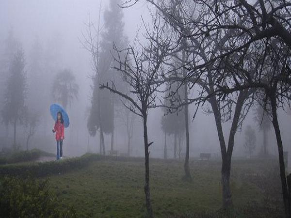 Mơ thấy trời mưa phùn là điềm gì?