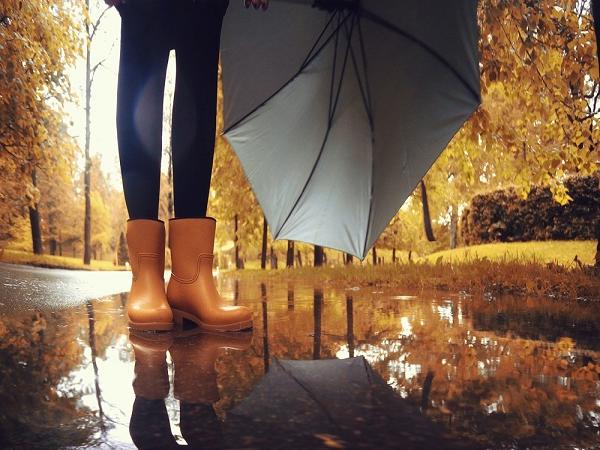 Ngủ mơ thấy trời mưa dự báo trước điềm gì?