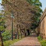 Du lịch bụi Thành Cổ Sơn Tây- điểm đến cuốn hút