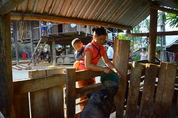 Tăng quyền kinh tế cho phụ nữ nông thôn